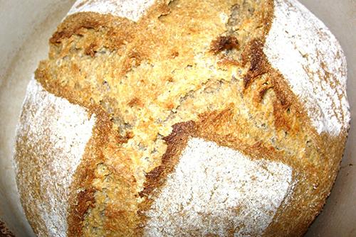 古代麦でフレッドの作ったパンです