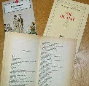 フランス文学、フランス語学校