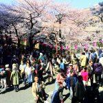 フランス語学校のブログ、目黒川