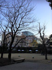 庭園美術館~岡上淑子展~